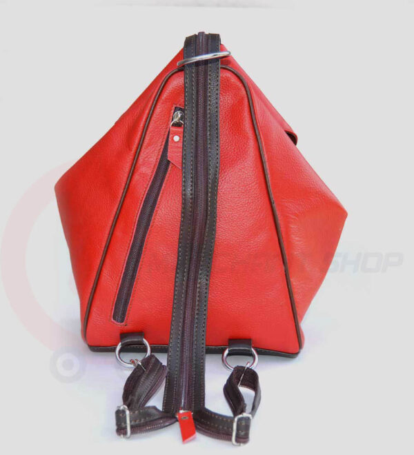 Student-Leather-Backpack-Red-Back